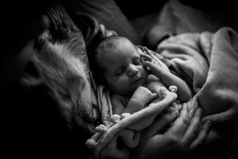 Neugeborenes auf Arm der großen Bruder in schwarzweiß beim Wochenbettshooting von Lisa von Rekowski Geburtsräume Wiebke Niemann Kragen Doula