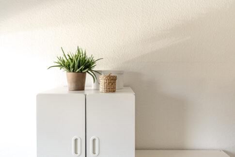 Stilleben Pflanzen auf Schrank in Weißtönen